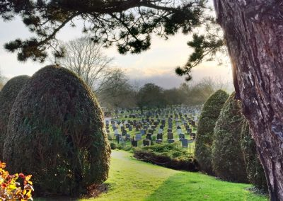 Rows of headstones with trees in the foreground of the image.